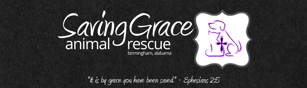Saving Grace Animal Rescue